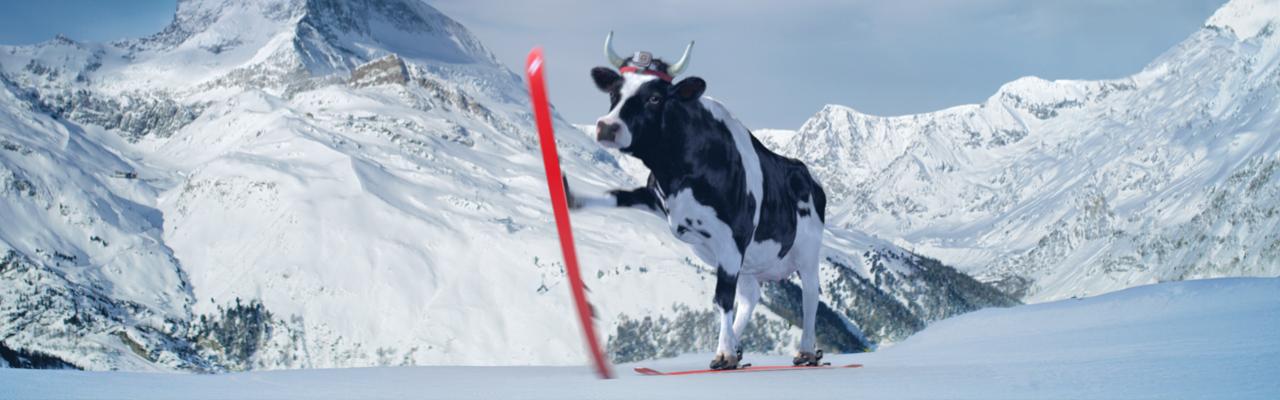 SwissMilk – Ski